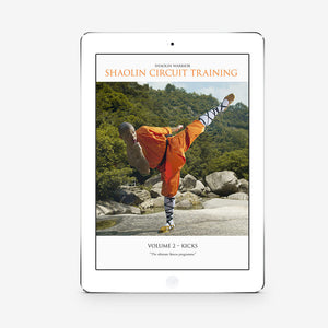Shaolin Circuit Training Vol. 2 – Kicks (Download) - shifuyanlei.myshopify.com