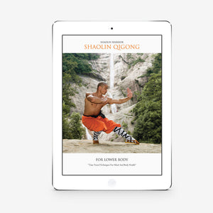 Shaolin Qigong For Lower Body (Download) - shifuyanlei.myshopify.com