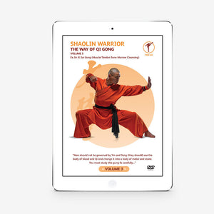 The Way Of Qigong Vol. 3 (Download) - shifuyanlei.myshopify.com
