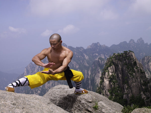 Online Training Course - Yi Jin Xi Sui Gong - Muscle/ Tendon Bone Marrow Cleansing - shifuyanlei.myshopify.com