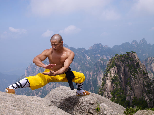 Online Training Course - 40 Day Shaolin Challenge