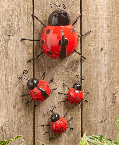 Garden Lady Bug Family