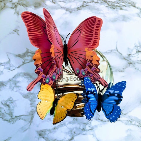 Butterflies Kaleidoscope Candle Magnet Set