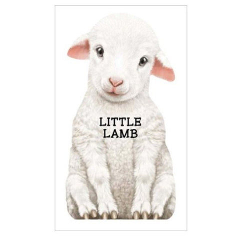 Little Lamb, Look at Me (boardbook)