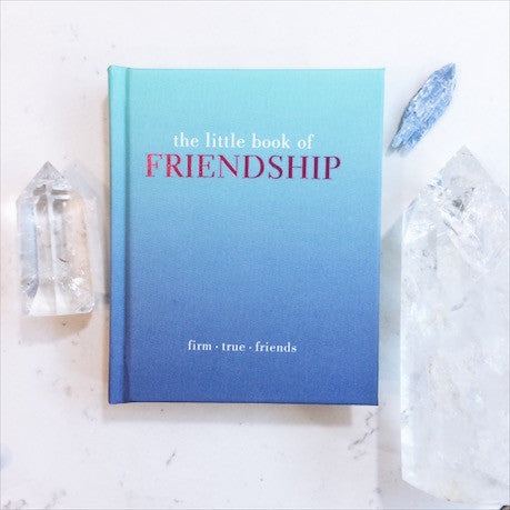 THE LITTLE BOOK OF: FRIENDSHIP by Tiddy Rowan - JD LUXE