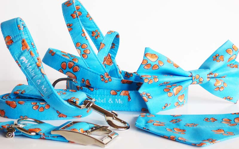 "Designer Dog & Cat Collar Range ""My Best Friend"""