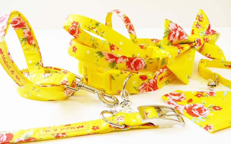 "Designer Cat  Collar Range ""Lemon Drizzle"""