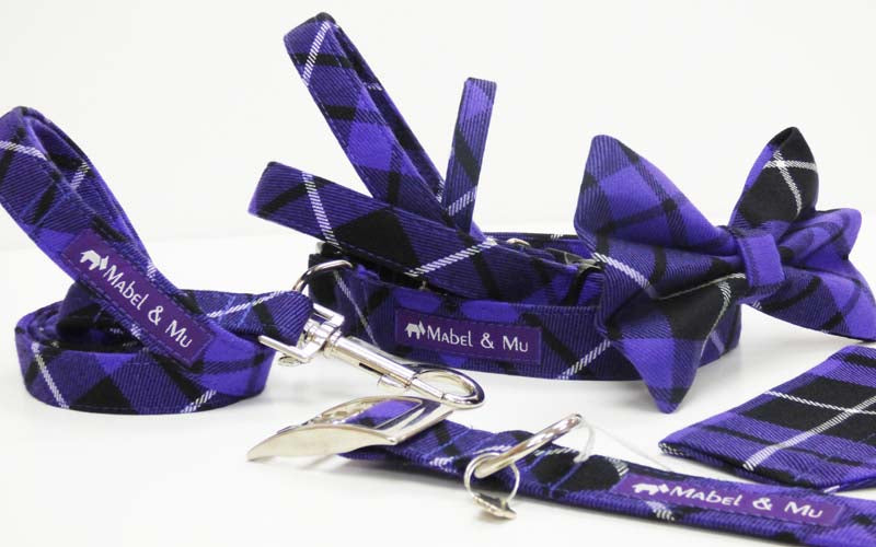 "Designer Dog & Cat Collar Range ""Thistle Walks"""