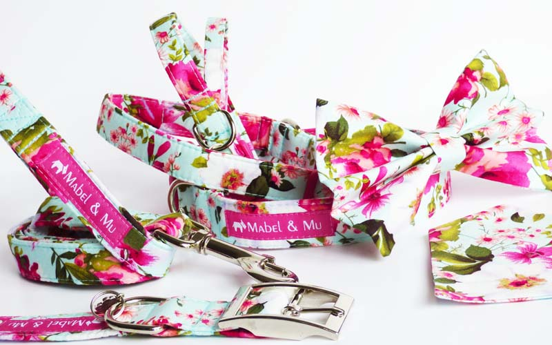 "Designer Dog & Cat Collar Range ""Orchid"""
