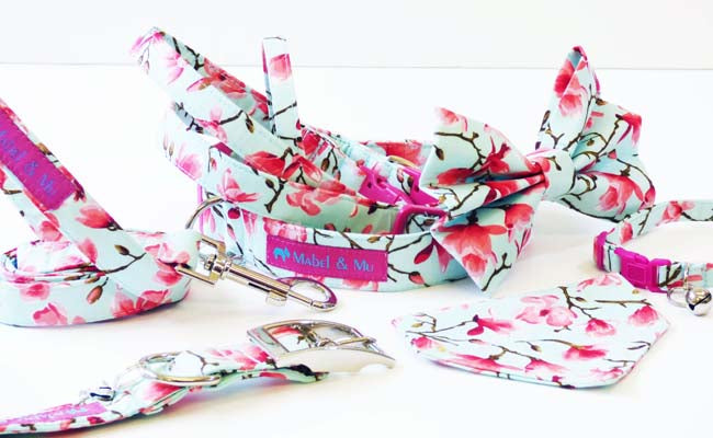 "Designer Cat Collar Range ""Sweet Pea"""