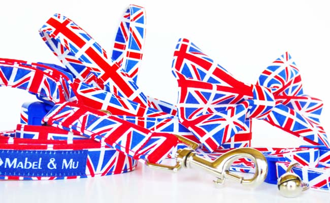 "Designer Dog Collar Range ""Union"""