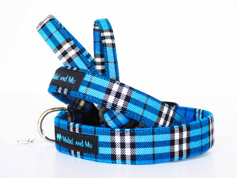 Costal Walks Dog Collar Range by Mabel & Mu