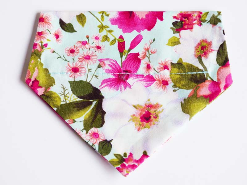 Orchid Cat & Kitten Bandana by Mabel & Mu