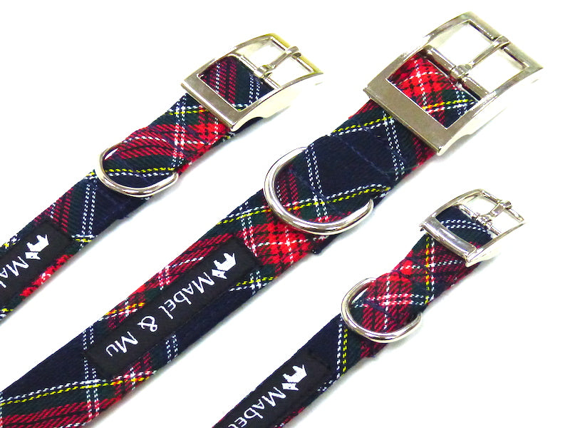 "Metal Buckle Dog Collar ""Derwent Walks"" Range by Mabel & Mu"