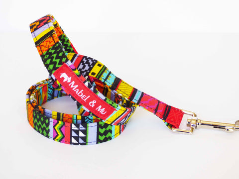 "Dog Walking Lead ""Rainbow Red"""