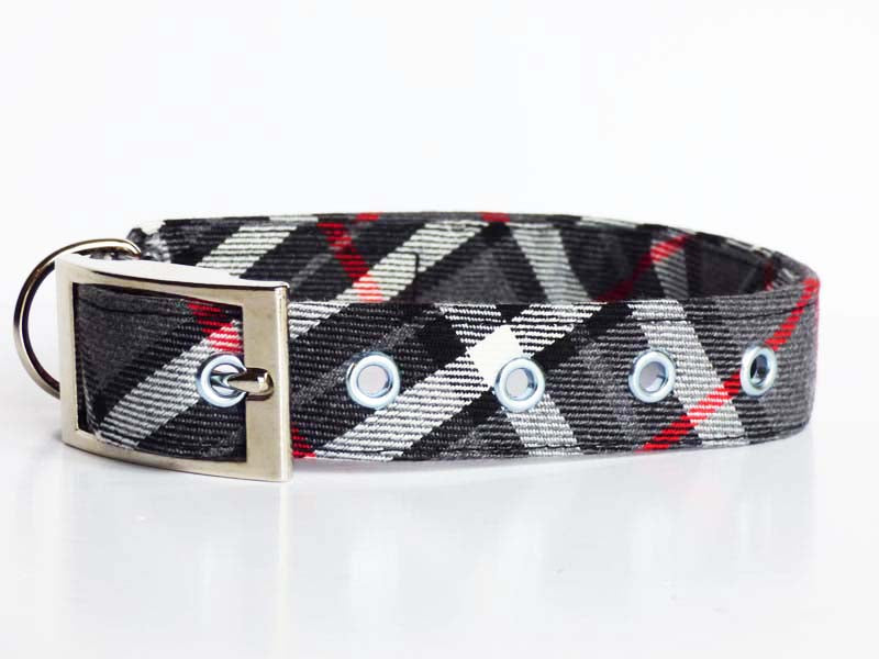"Mabel & Mu Metal dog collar ""Family Walks"""