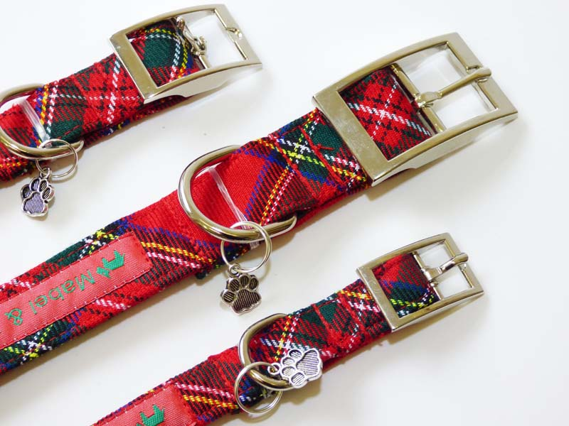 "Designer Metal Buckle Dog Collar ""Lakeland Walks"" by Mabel & Mu"