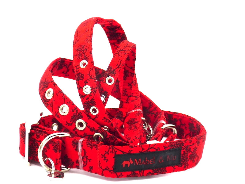 "Designer Metal Buckle Dog Collar ""The Tango"" by Mabel & Mu"