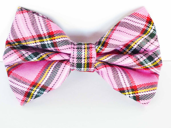 Wildflower Walks Dog Bow Tie by Mabel & Mu