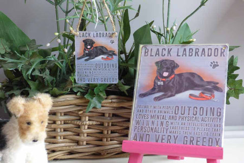 Black Labrador Metal Sign - Mabel & Mu