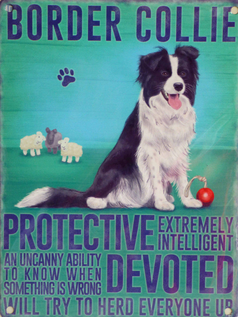 Border Collie Metal Pet Sign - Mabel & Mu