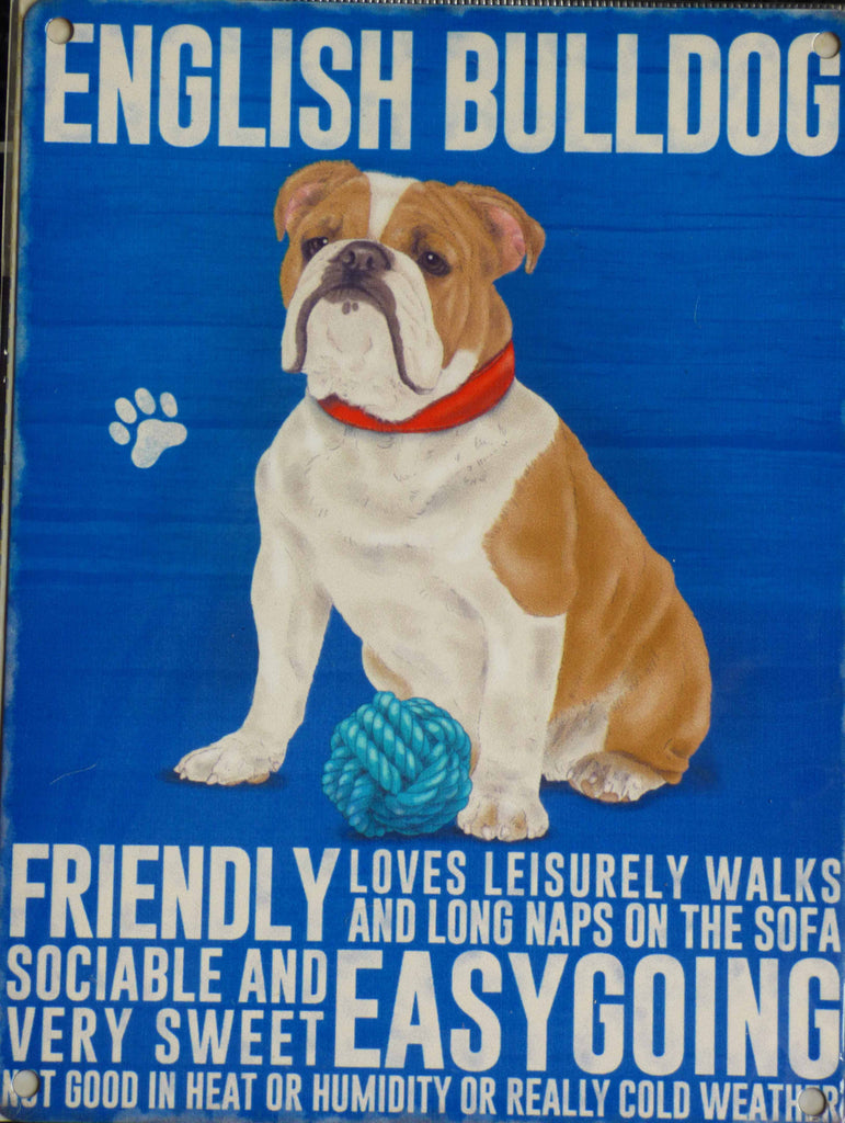 English Bulldog Metal Sign - Mabel & Mu