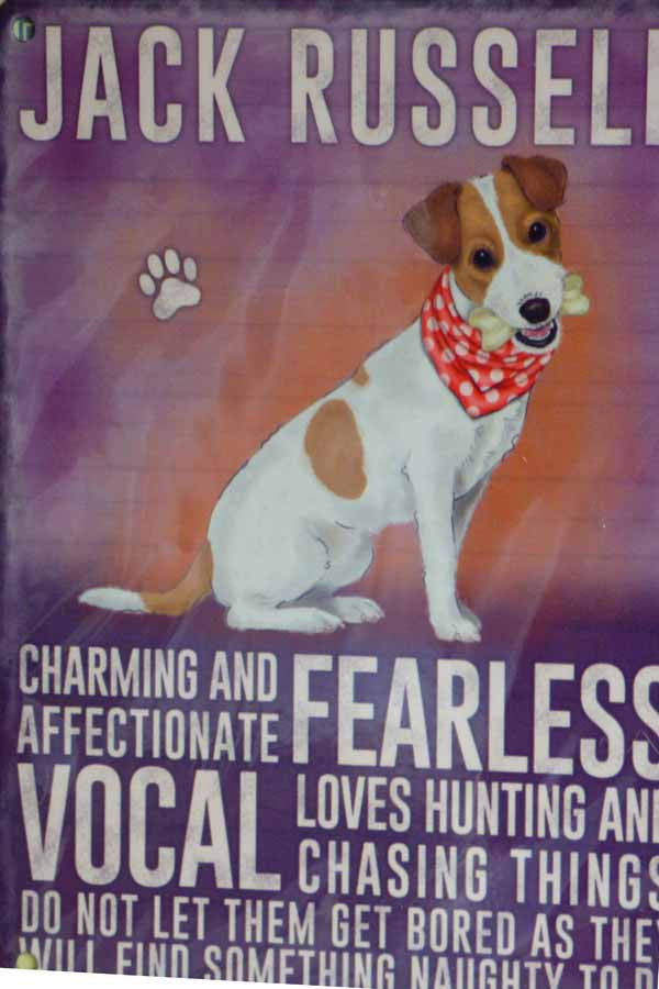 Jack Russell Metal Pet Sign - Mabel & Mu