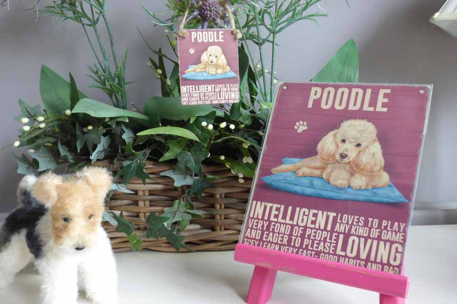 Poodle Cream Metal Sign - Mabel & Mu