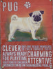 Pug Metal Pet Sign - Mabel & Mu