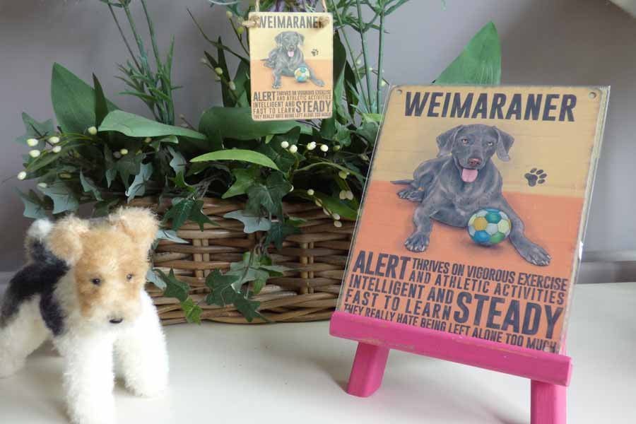 Weimaraner Metal Sign - Mabel & Mu
