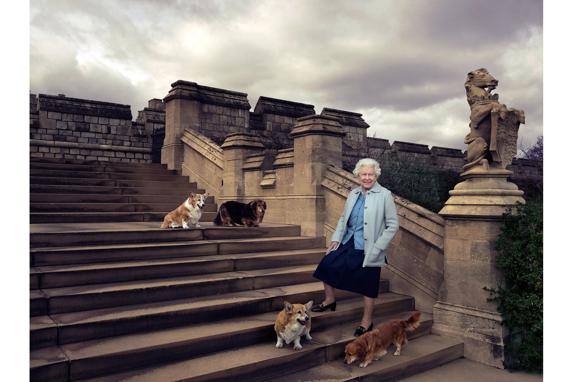 The Royal family and their dogs