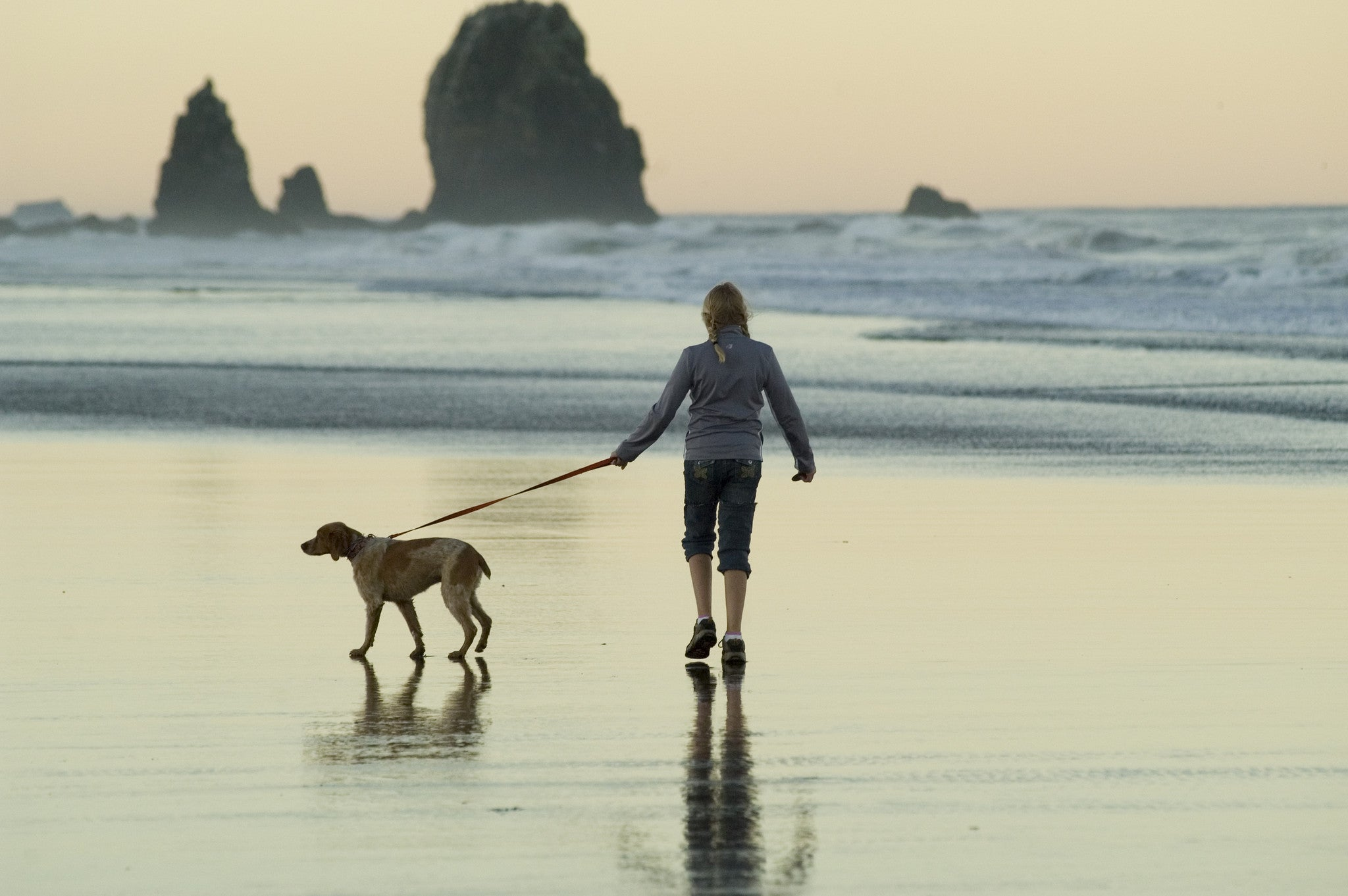 The key to a longer life? Walk the dog