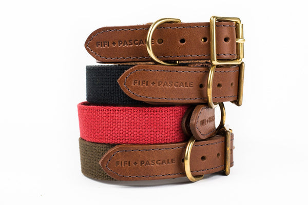 Dog Collar -  Leather with Deep Olive webbing