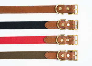 Dog Collar - All leather