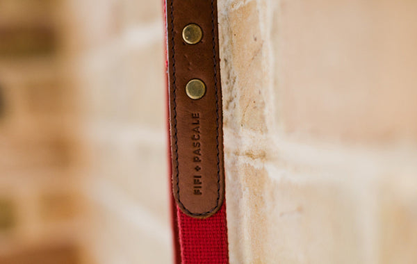 Dog Lead - Leather and red webbing