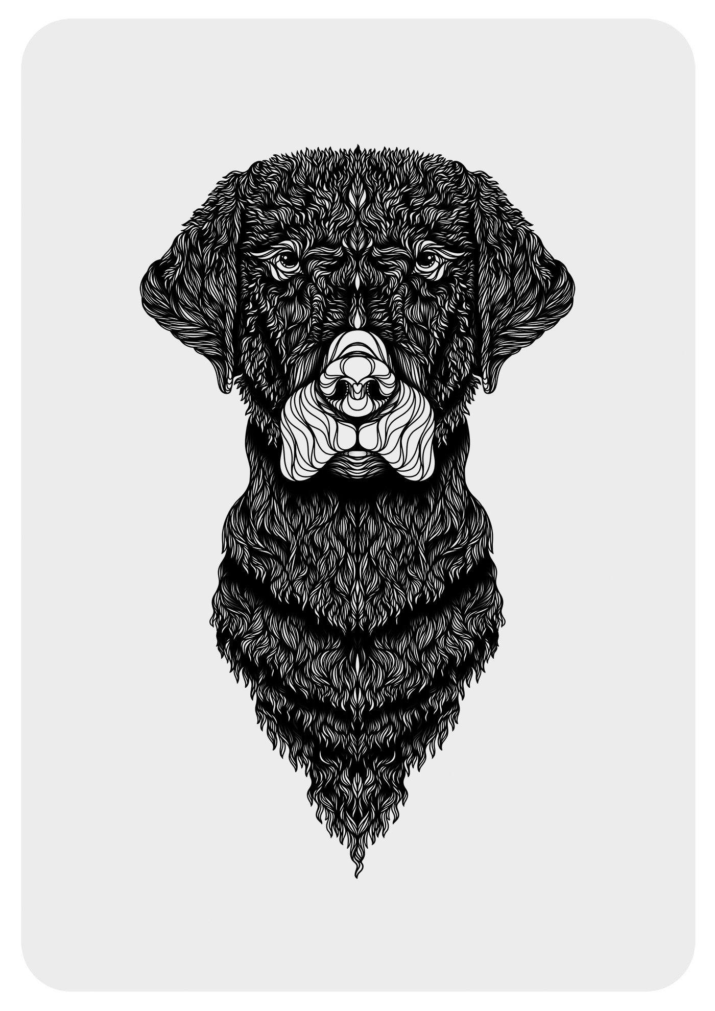 Labrador Wall Art
