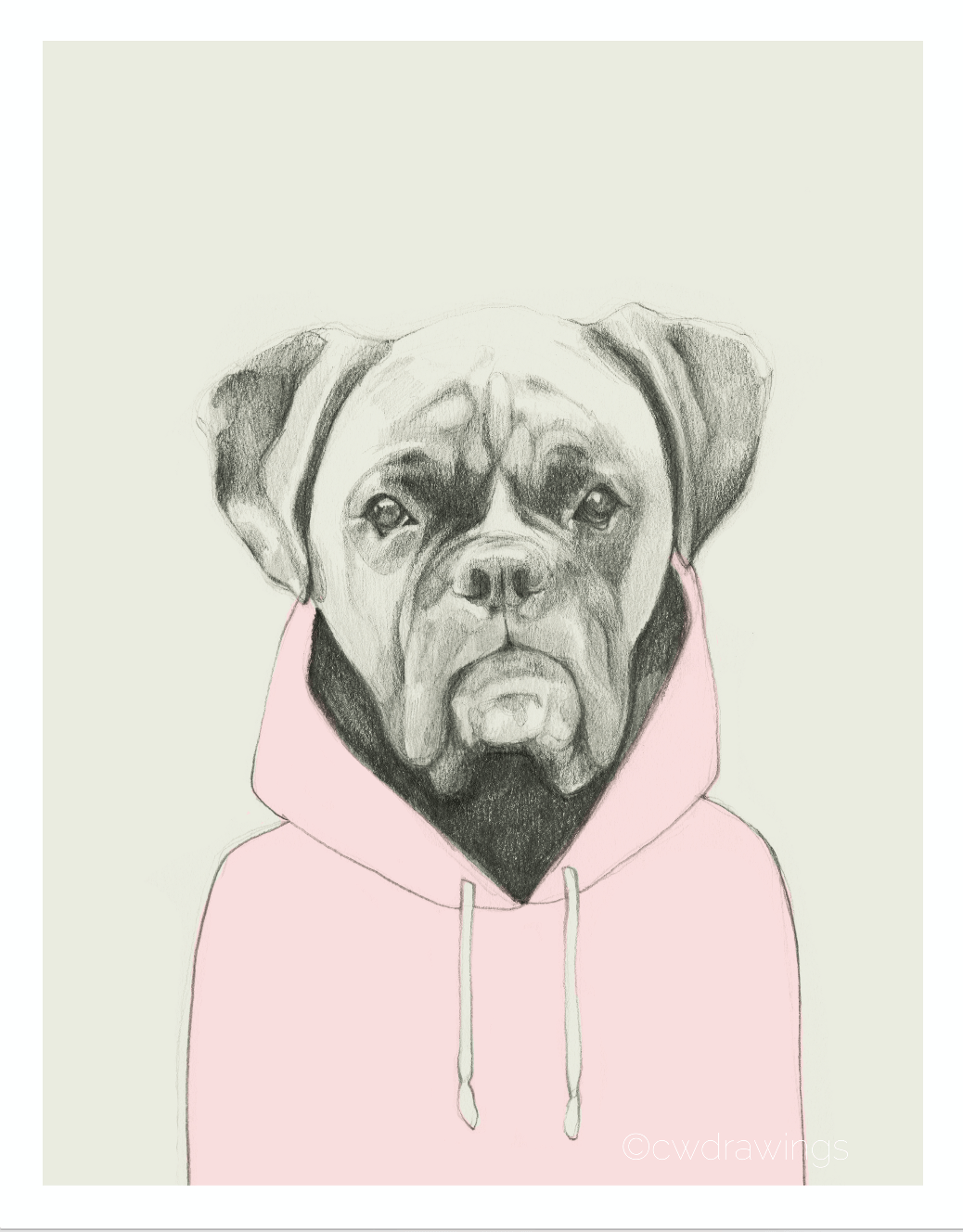 Boxer in a Hoodie