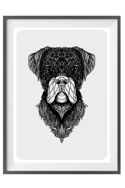 Boxer Art - Black and White