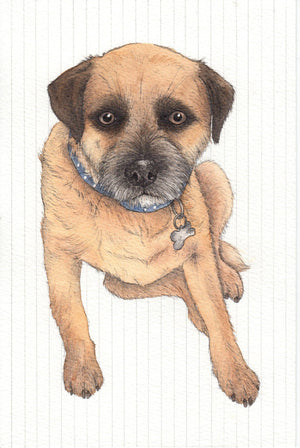 Dani Williams - Pet portrait