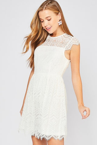 Cap Sleeve Delicate Lace Dress