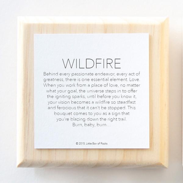 Little Box Of Rocks - Wildfire (Success)
