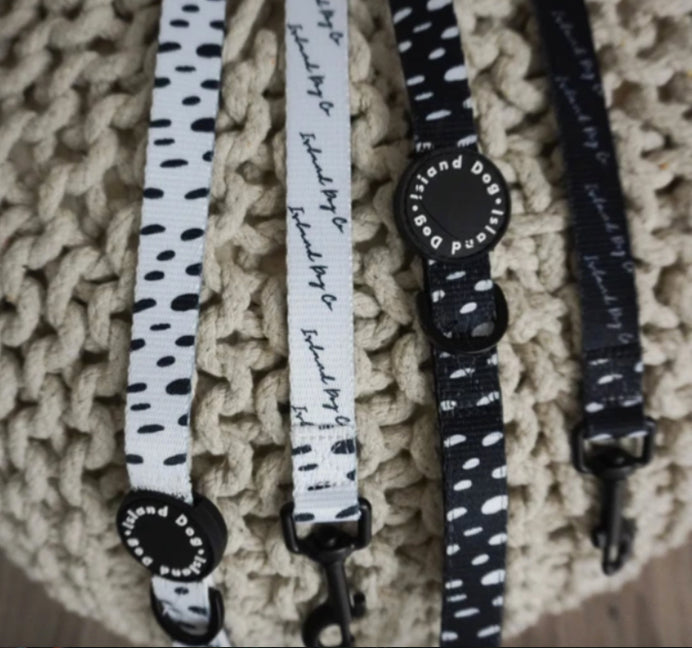 """Seeing Spots"" Dog Leash"