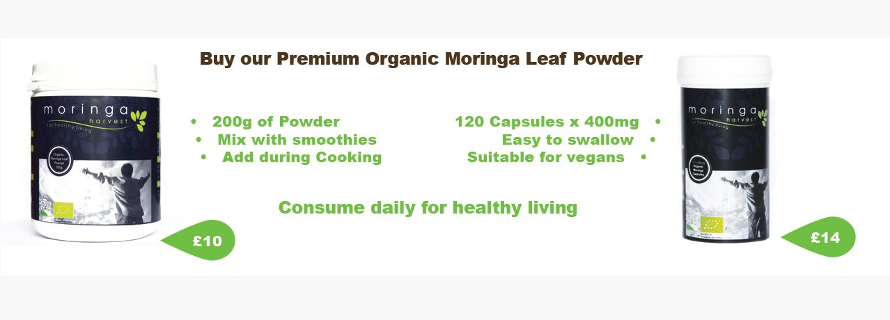 Buy our organic Moringa from just £17.99