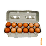 Shadow Cross Farms -  Cage Free Grade A Large Eggs