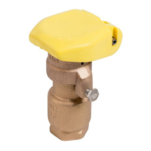 RainBird Quick Coupling Valve