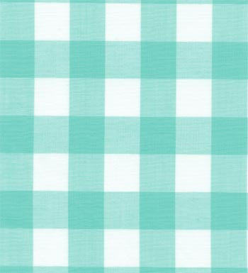 "60"" 1"" Mint Gingham Check"