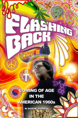 Flashing Back - Coming of Age in the American 1960s - A Missing Link in the history 1960s
