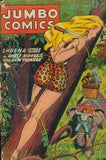 Golden Age Comics Vol. 2 - Fiction House 1940-55 - 756 issues - 6 DVD-ROM  boxed