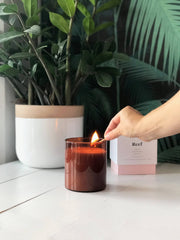 Reef Candle