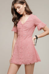Moon River Gingham Skater Dress